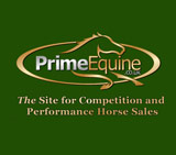 Charlotte Holmes – Amateur flat jockey and director at Prime Equine